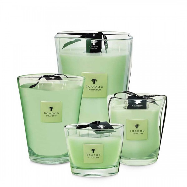 Modernista Vidre - Poetry - Baobab Collection -Scented candles