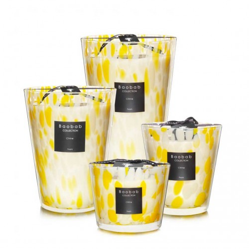 Citrine Pearls - Baobab Collection -Bougie parfumée