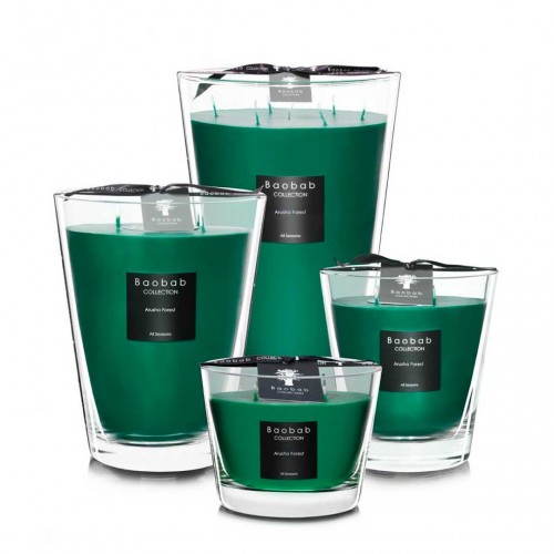 All Seasons - Arusha Forest - Baobab Collection -Bougie parfumée