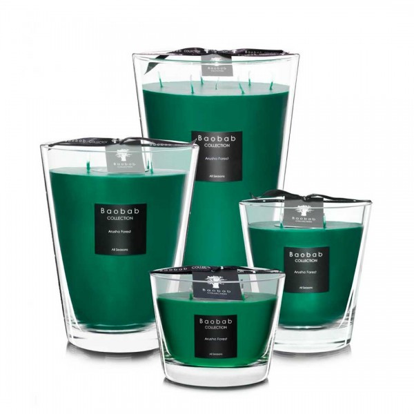 All Seasons - Arusha Forest - Baobab Collection -Scented candles