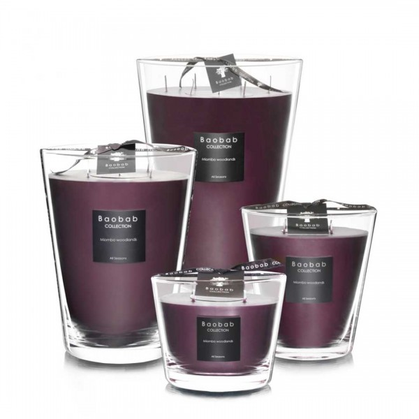 All Seasons - Miombo Woodlands - Baobab Collection -Scented candles