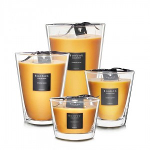 All Seasons - Zanzibar Spices - Baobab Collection -Scented candles