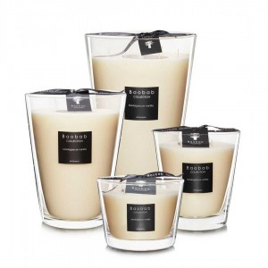 All Seasons - Madagascar Vanilla - Baobab Collection -Scented candles