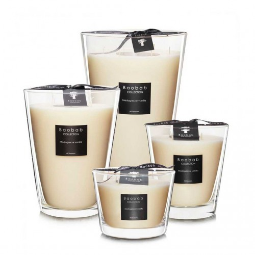 All Seasons - Madagascar Vanilla - Baobab Collection -Bougie parfumée