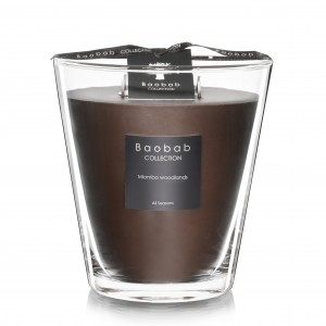 Miombo Woodlands Max 16 - Baobab Collection -Bougie parfumée
