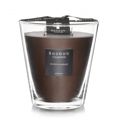 Miombo Woodlands Max 16 - Baobab Collection -Scented candles