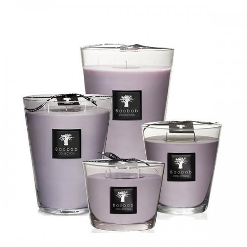 All Seasons - New - White Rhino - Baobab Collection -Bougie parfumée