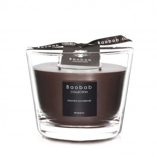 Miombo Woodlands Max 10 - Baobab Collection -Bougie parfumée