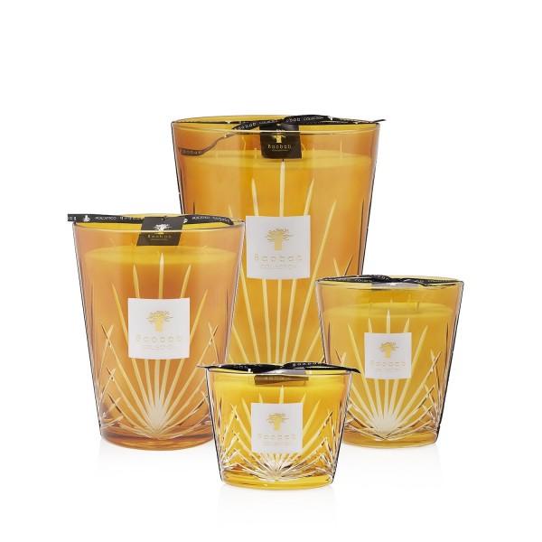Palma - Baobab Collection -Bougie parfumée