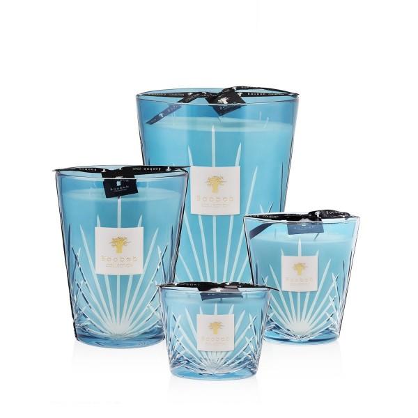 West Palm - Baobab Collection -Bougie parfumée