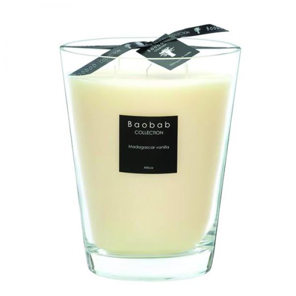 Madagascar Vanilla Max 24 - Baobab Collection -Bougie parfumée