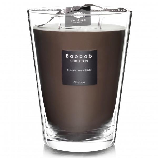 Miombo Woodlands Max 24 - Baobab Collection -Bougie parfumée