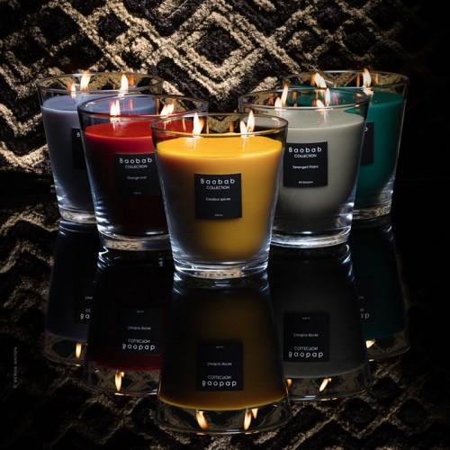 Zanzibar Spices Max 16 - Baobab Collection -Bougie parfumée