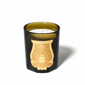 Carmélite (Mur Ancien Et Humide) - 270G - Cire Trudon -Bougie parfumée