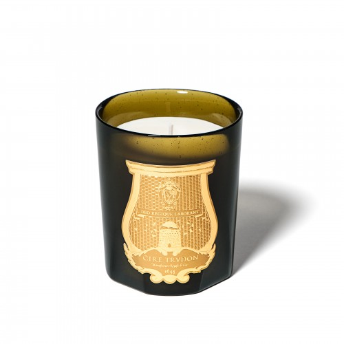 Ernesto (Cuir Et Tabac) - Cire Trudon -Scented candles