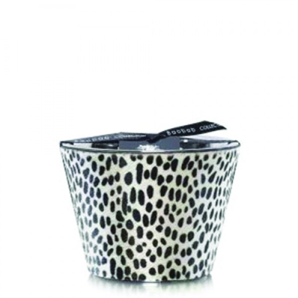 Ghepardino - Max 10 - Baobab Collection -Bougie parfumée