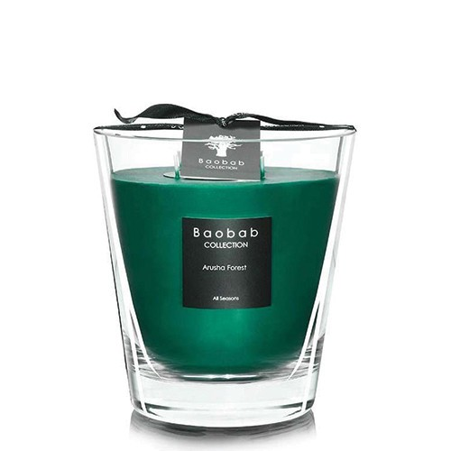 Arusha Forest - Max 16 - Baobab Collection -Bougie parfumée