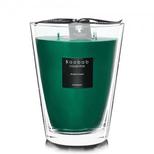Arusha Forest - Max 24 - Baobab Collection -Bougie parfumée