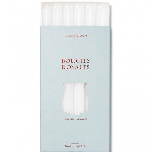 Royale Blanc - Chandelles - Cire Trudon -Décoration