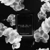Sensual Orchid - Laurent Mazzone Parfums -Bougie parfumée